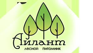 Лесной питомник Айлант